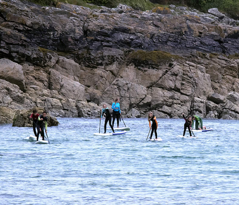 Stand Up Paddleboarding Tours - SUP Safari